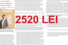 INTERVIU ARSENE-2520 LEI (Copy)
