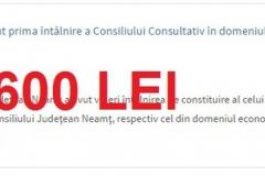 cons consult econ-28 nov-600 lei (Copy)
