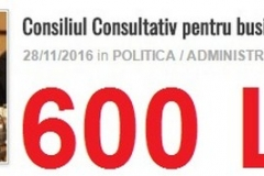 cons consultativ ec si afaceri-28 nov-600 lei (Copy)