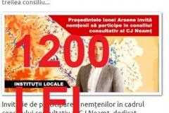 cons consultativ dom econom si afacerilor-22 nov-1200 lei (Copy)