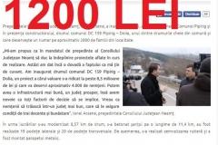 dolia-1200 lei (Copy)