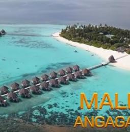 Mișcare suspectă! Arsene a renunțat la firma de termopane după concediul petrecut cu Dragnea în Insulele Maldive