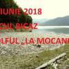Atacul.ro a descoperit un alt focar de infecție pe Lacul Bicaz. Autoritățile, indiferente la dezastrul ecologic