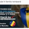 Mint și manipulează așa cum respiră. Dăncilă afirmă că PSD nu face campanie pentru referendum. Senatorul Manoliu face ce vrea el