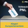 (P) Duminică Neamțul va fi în primul rând! Nemțenii vor ieși la vot pentru România, pentru Uniunea Europeană!