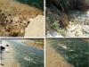 (VIDEO+FOTO) Dezastru ecologic pe Bistrița! Balastiera lui Ginel este răspunzătoare. Garda de Mediu nu intervine pentru că… nu a fost sesizată