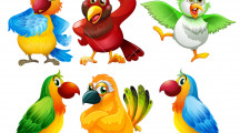 Papagalii și politica