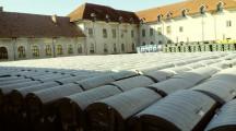 Amenda de peste un milion de euro încasată de CJ Neamț de la Uniunea Europeană și misterul sutelor de containere și pubele depozitate în Dărmănești