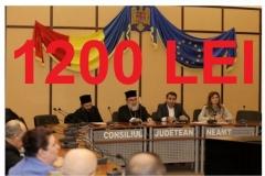 18 nov-1200 lei-consiliul consultativ (Copy)
