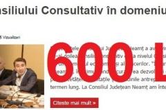 cons consultativ economic 28 nov aparut-600 lei (Copy)